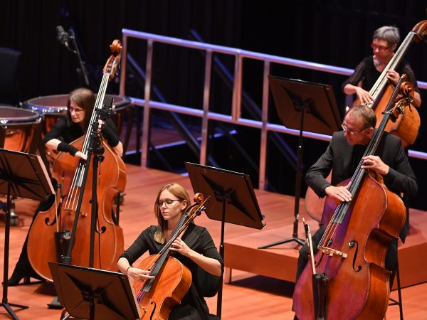 Explore the inner workings of a symphony orchestra with the BSO